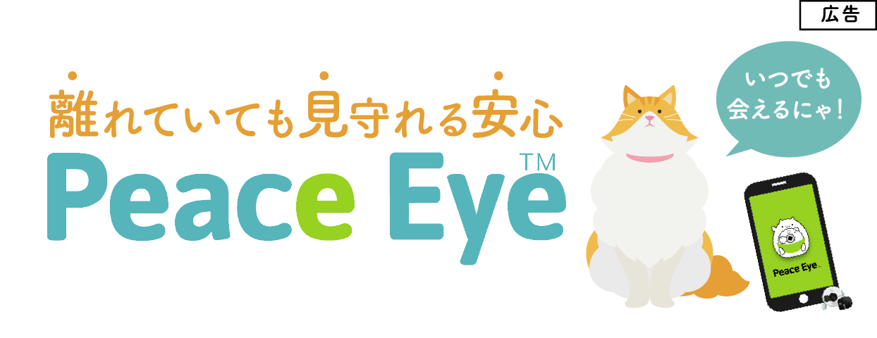 広告バナーPeaceEye